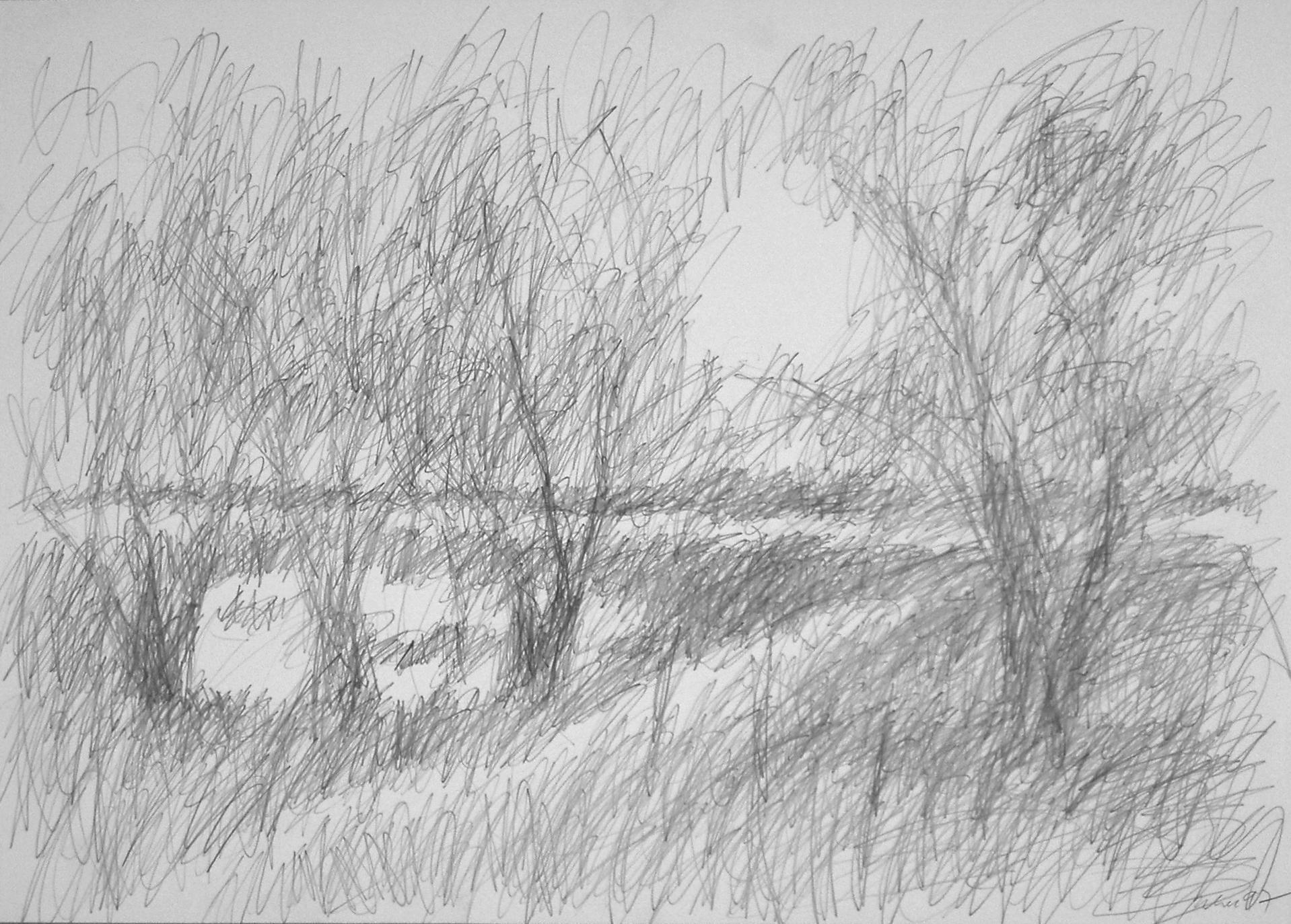 Am Weiher, Hiddensee