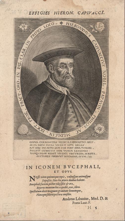 Bildnis des Hieronymus Capivacchus