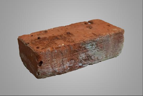 Ziegelstein mit Steinlausbefall