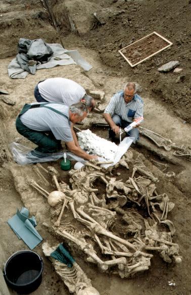 Ein Ausschnitt der mittelalterlichen Richtstätte am Hansaplatz zeigt die dichte Lage der Toten.