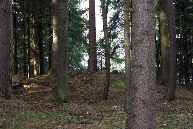 Einer der Grabhügel.