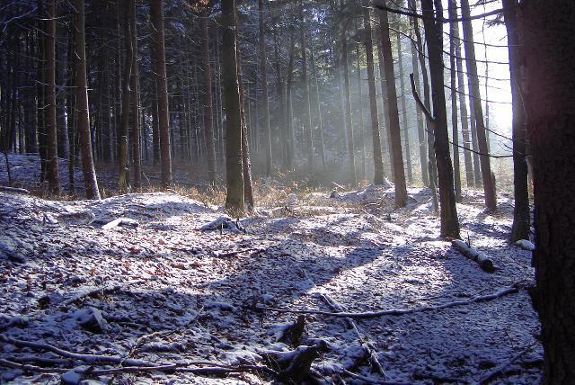 Landschaftsaufnahme im Grubenrevier Schwarzer Crux.