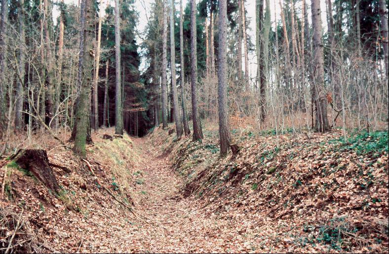 Wälle und Gräben riegelten die mittelalterliche Straßenführung ab.