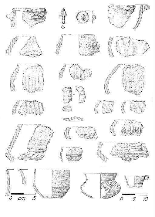 Funde der Ausgrabungen auf dem Kolk (nach Bach/Peschel 1962).