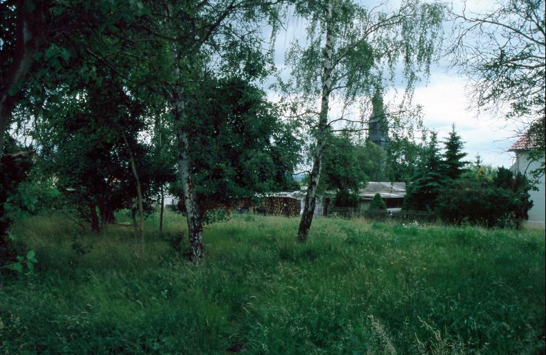 Vom ehemaligen Albersdorfer Wall kündet heute nur noch die Baumgruppe.