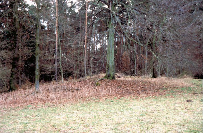 Auf der Höhe über dem Seniorenheim sind zwei Hügel der ehemals umfassenden Gruppe gut erkennbar.
