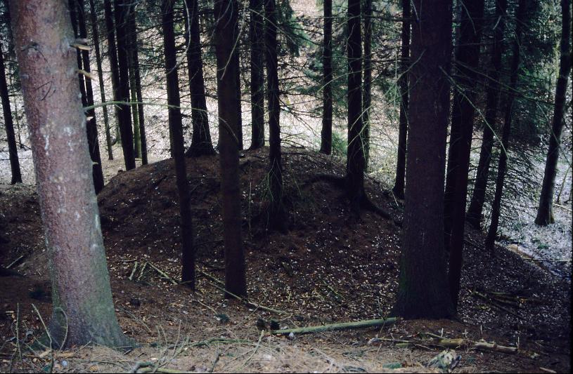 Die Wallanlage von Ernsee im Lessengraben.