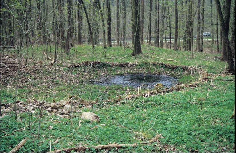 Der ehemalige Dorfteich kennzeichnet die Lage von Vollersdorf.