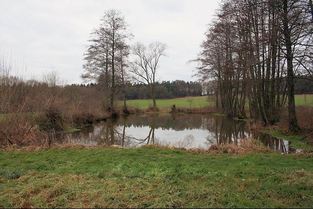 Der Dorfteich der ehemaligen Siedlung Korberoth.