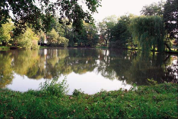 Von der Wasserburg Madelungen ist nur noch der Teich erhalten.