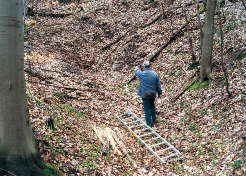 Der verbrochene und nahezu unkenntliche Eingang eines bis ca. 1990 noch offenen Entwässerungsstollens im Rangenhof-Revier.