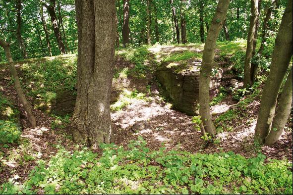 Zwischen Bäumen versteckt kann man auch heute noch die Überreste der Burgruine Metilstein erkennen.