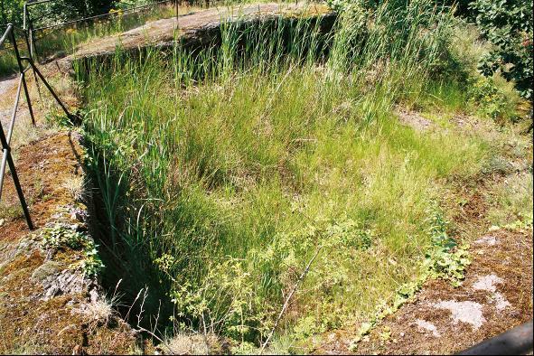Diese eingetiefte Grube war der Standort des Fischerturms in Eisenach.