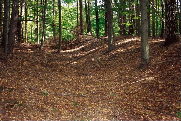 Der Wall befestigt die neuzeitliche Befestigung Königstein.