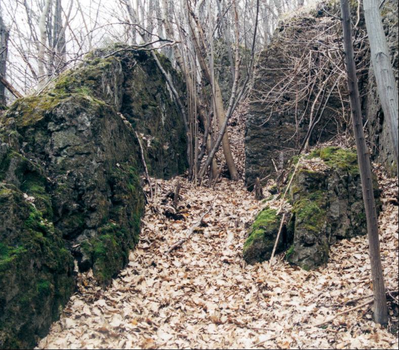 Ein zwischen den Felsen des Zechsteinriffs auf dem Wittgenstein aufgrund von Spatabbau entstandenes Tagebaurestloch.