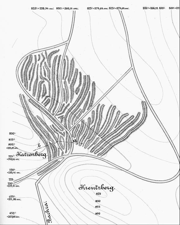 Hohlwegbündel am Südrand der Finne als Reste alter Wegführungen (nach Zschiesche 1889).