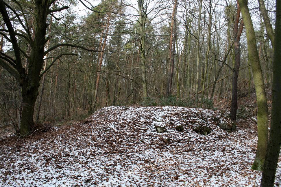 Die Richtstätte Galgenberg bei Bad Frankenhausen ist eine der wenigen erhaltenen im mitteldeutschen Raum.