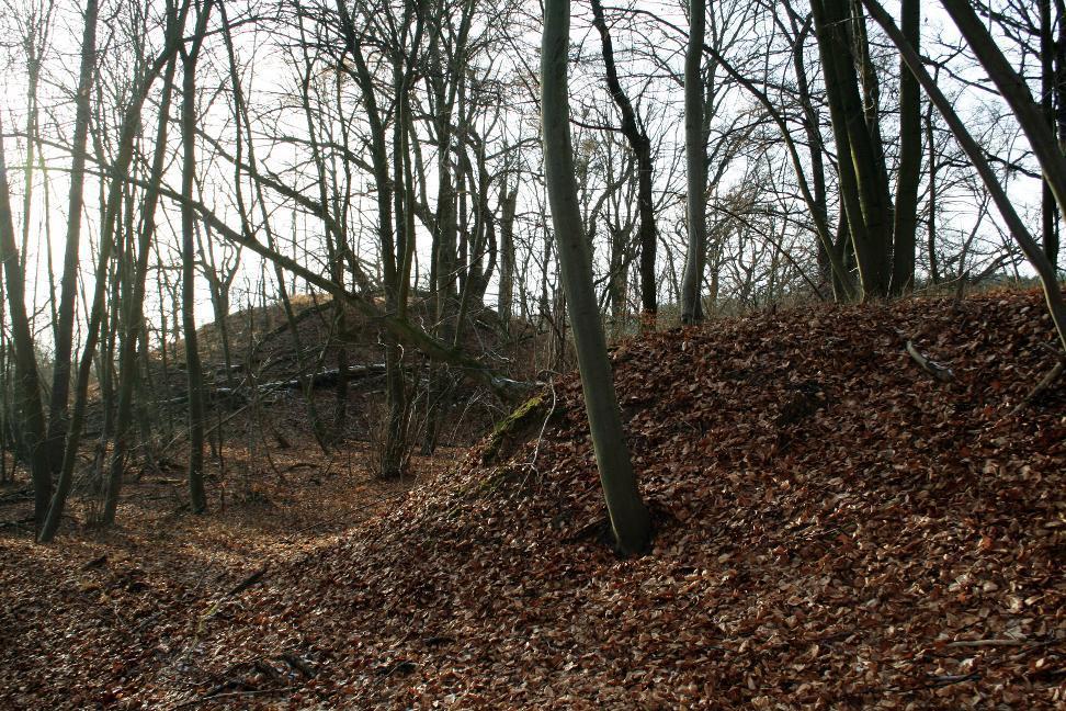 Die Nutzung der Wallanlage Kattenburg bei Bad Frankenhausen ist unklar.