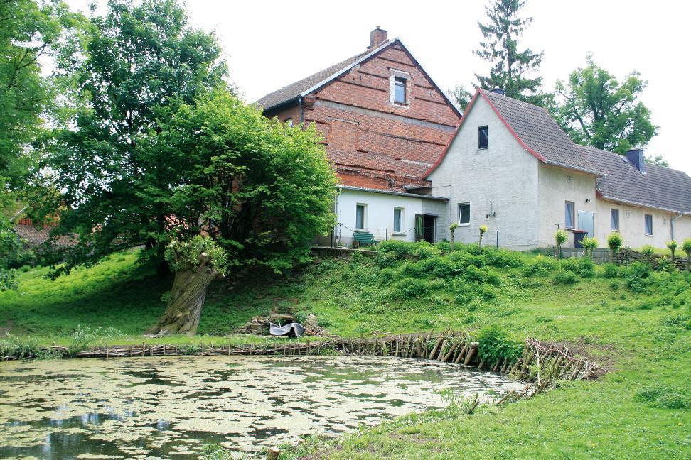 Der Turmhügel der ehemaligen Wallburg in Freienbessingen.