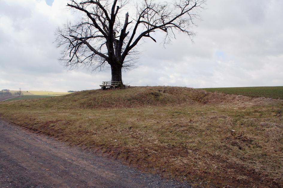 """Der Grabhügel """"Becks Grab"""" auf dem Weg von Berka/ Werra nach Dippach."""