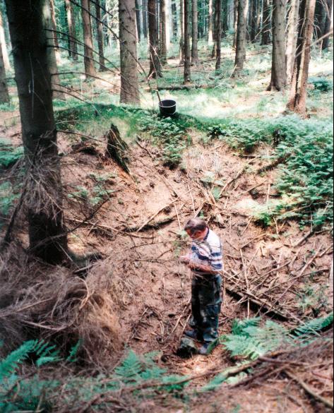 Auf dem Erzgang am Rehkopf bei Steinbach liegen dicht nebeneinander Schachtpingen.