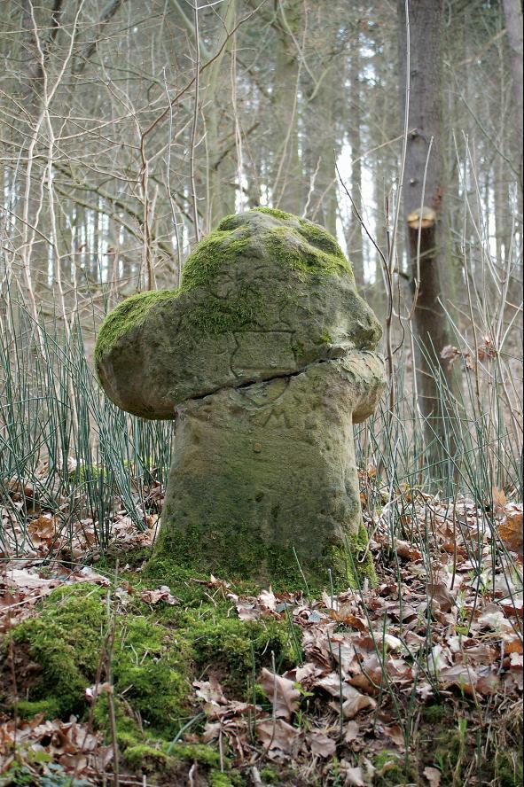 Das Steinkreuz von Bad Salzungen mit Wappenstechschild.
