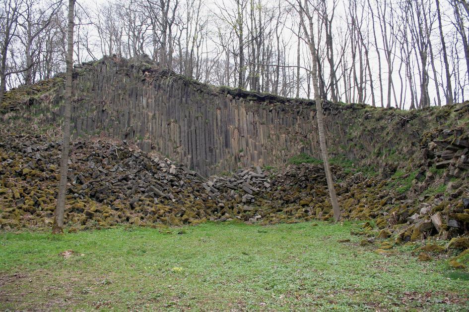 Basaltsäulen am Geiskopf.
