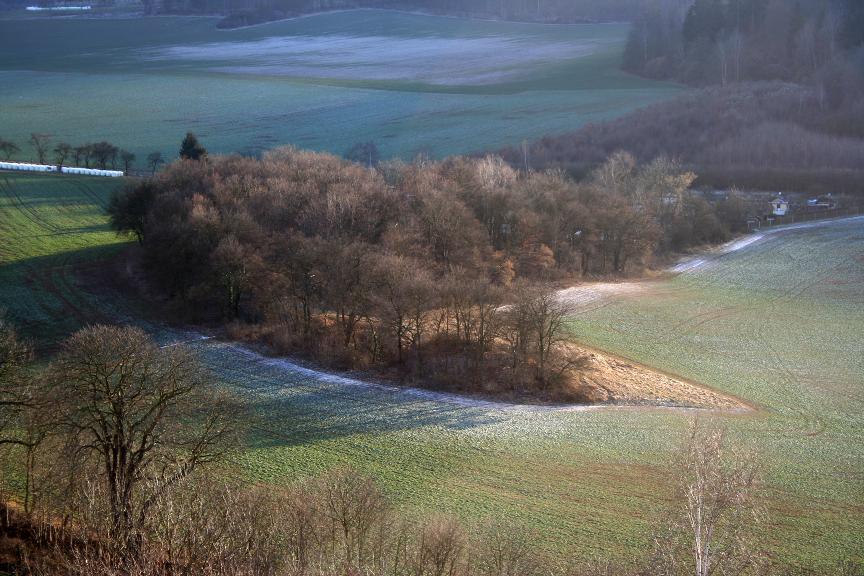 In dem kleinen Wäldchen südlich der Altenburg lassen sich noch Reste der reich ausgestatteten früheisenzeitlichen Grabhügel erahnen.