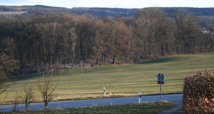 Am Waldrand von Wernburg sieht man historische Überreste des Kupferbergbaus.