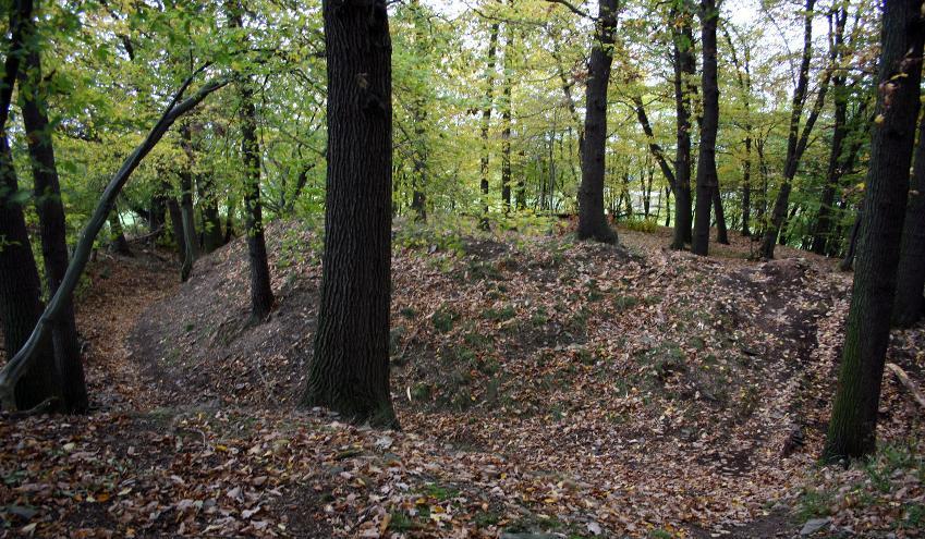 Der innere Graben der turmhügelartigen Anlage Schanzgraben bei Wernburg ist deutlich im Gelände sichtbar.