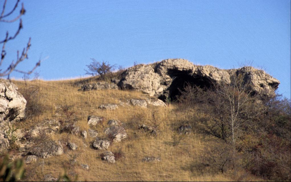 Der altsteinzeitliche Siedlungsplatz der Wüste Scheuer.