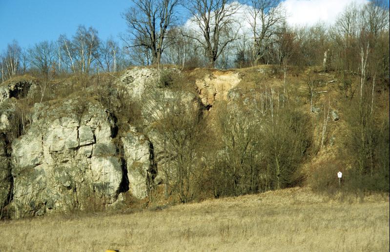 Die Südseite des Gamsenberges bei Rehmen ist von besonderer archäologischer Bedeutung.