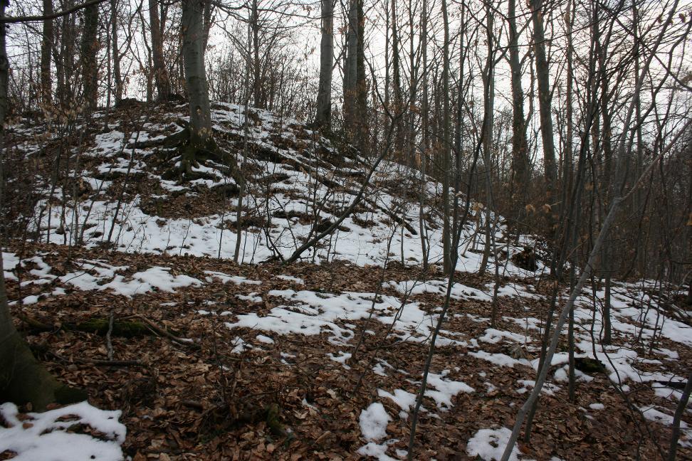 Dieser Graben ist der letzte sichtbare Rest der kleinen Burg bei Kospoda zu sehen.