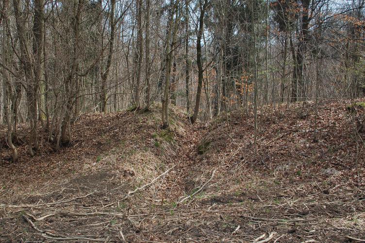 Ein verfallener Abschnitt der Wallanlage auf dem Ettersberg.