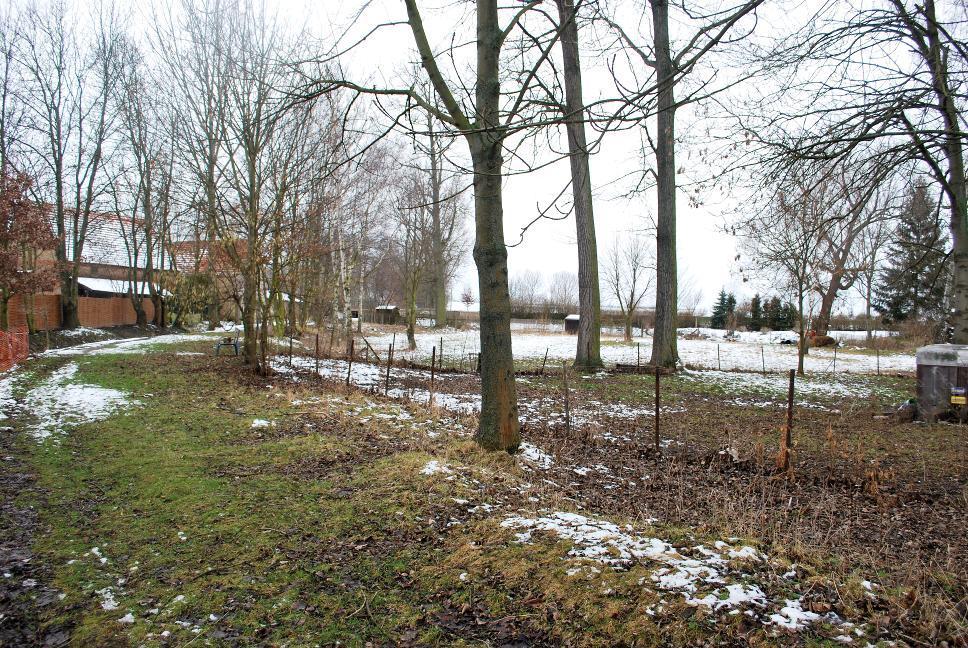 Das ehemalige Burgareal bei Daasdorf.
