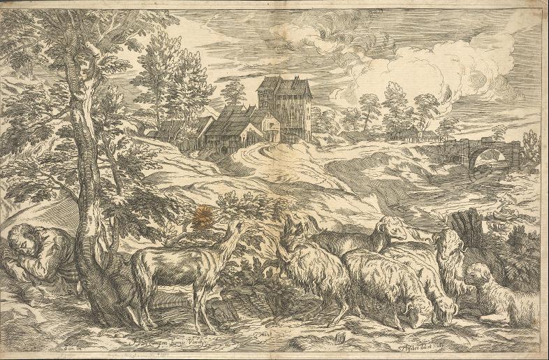 Landschaft mit Schafen