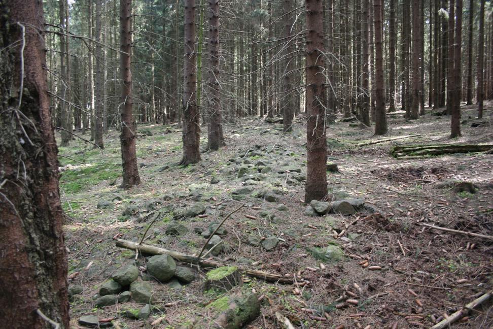 Die Steine sind als Trockenwälle aufgeschichtet